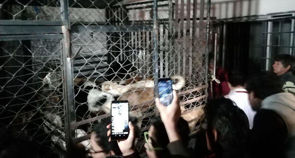 Vecinos señalan que la mujer, a quien llaman la 'Mata Perros', robaba animales domésticos del vecindario y pedía recompensa por ellos. (Foto: @AmbienteGobPue)