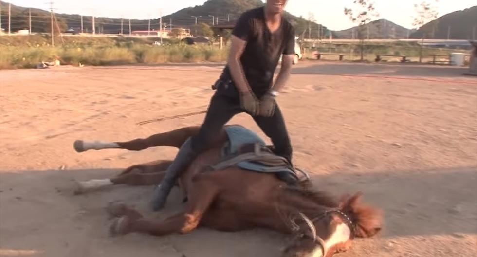 Facebook: caballo se 'hace el muerto' cada vez que alguien lo quiere montar | FB | Face | Animales | Insólito | Curiosidades | Video